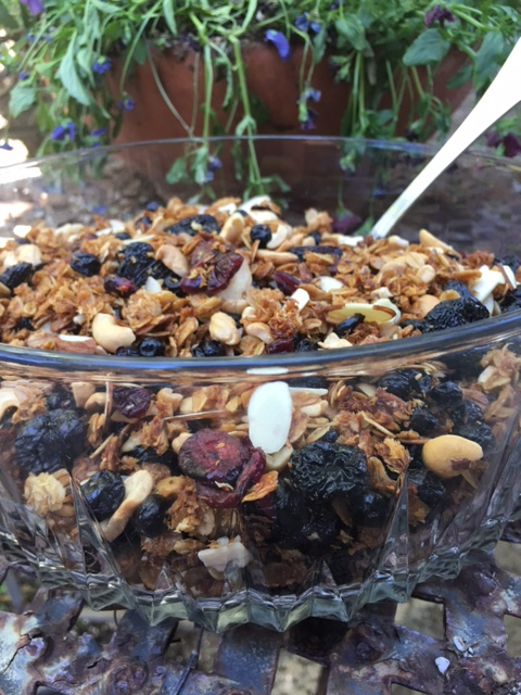 Granola with Dried Blueberries, Dried Cherries and Vanilla